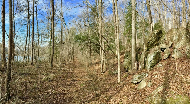 There are many rock outcroppings along the trail.