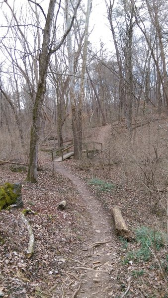 A sturdy bridge aids your passage over a small creek in this section.