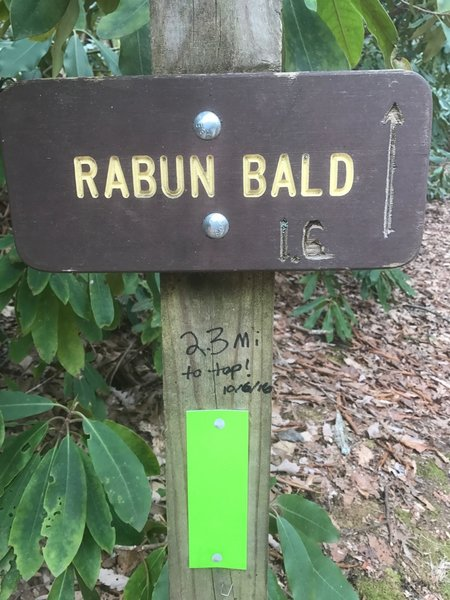 This is the only green blaze I saw -  the rest were yellow. And the 2.3 miles noted is if you take the trail to the right at the very beginning (they merge halfway). The left fork at the trailhead is 1.6 miles from the top.