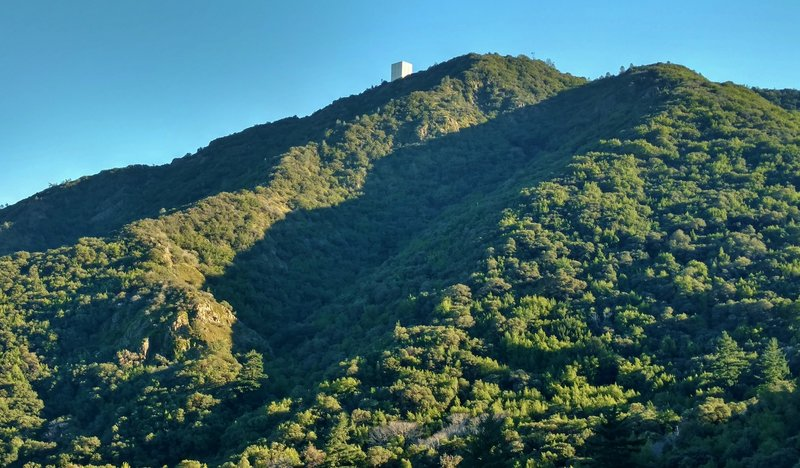 Mt. Umunhum shines in the late-afternoon sun from the Woods Trail.