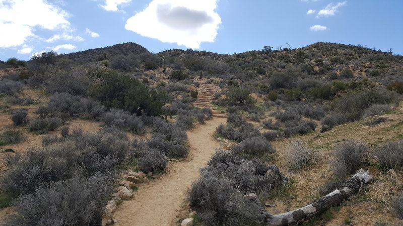 Traveling clockwise on the trail, the first set of steps is manageable.