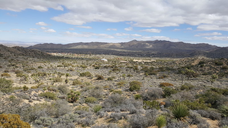 Part way up the trail, look back toward the campground for a sprawling view of your desert surroundings.