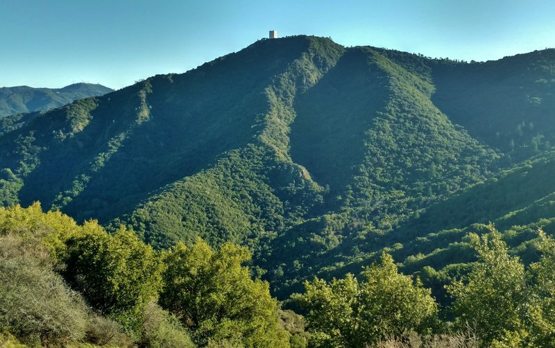 Mt. Umunhum stands prominently in the distance from high on the Woods Trail.