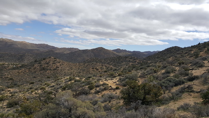 Look east from the trail for picturesque views of Joshua Tree National Park.