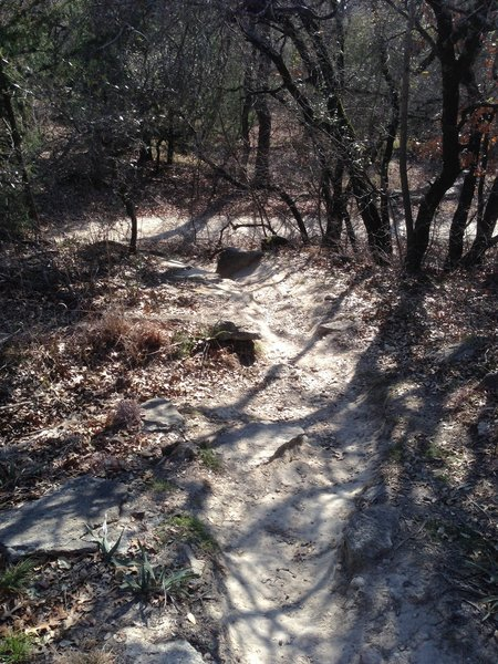 Navigate this steep climb at the southeast end of the Shoreline Trail.