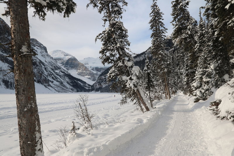 Lake Louise makes for gorgeous trailside scenery in the winter.
