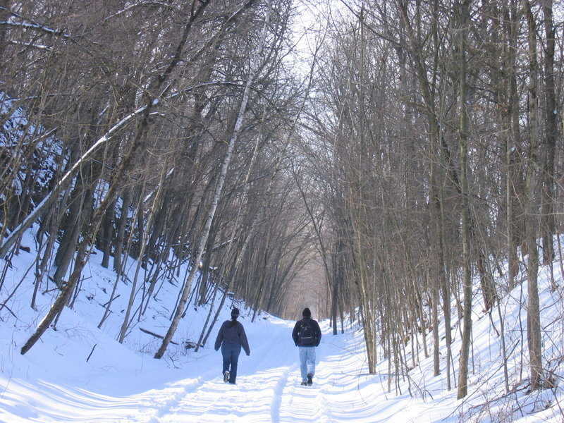 Come experience a picturesque winter wonderland on the Galena River Trail.