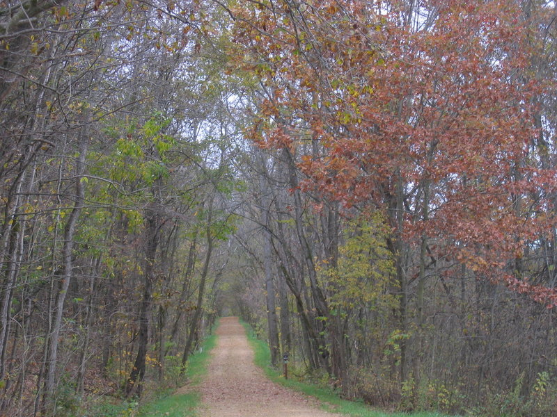 Enjoy the Galena River Trail on a chilly fall day to experience falling leaves, quiet forests, and peaceful solitude.