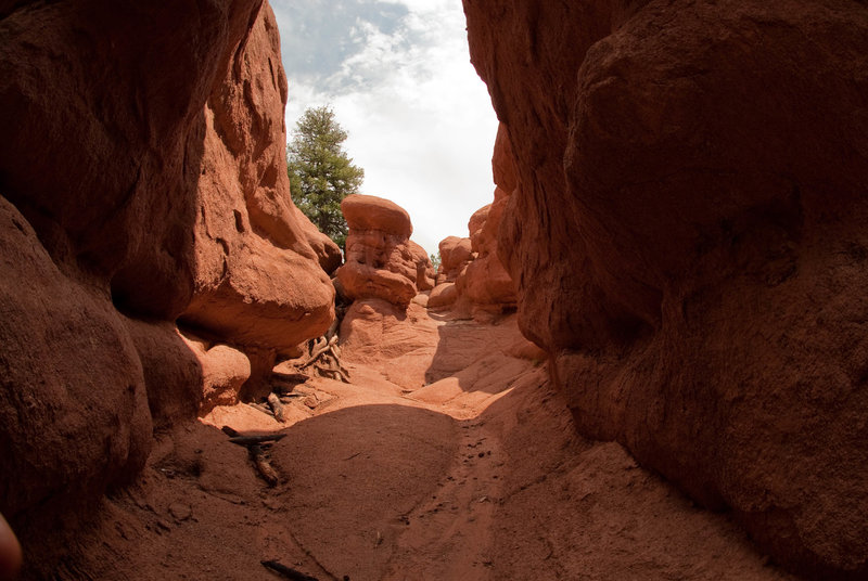 Climb through the red rocks to fully experience just how beautiful they are.