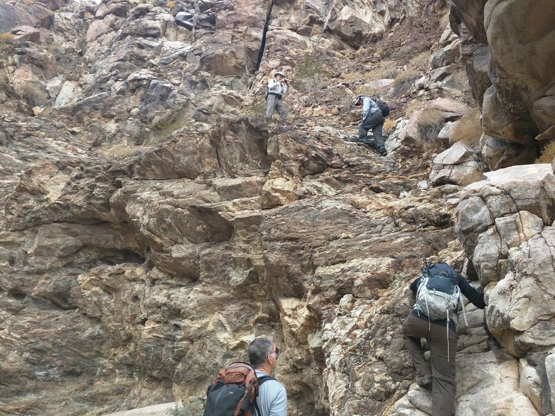 The climb up Davies Canyon is truly a climb!