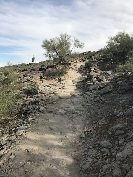 Navigate the occasional rock staircase along the Mormon Trail.