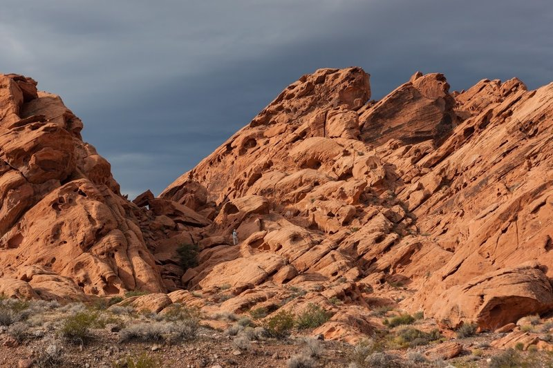 Explore the red rocks.