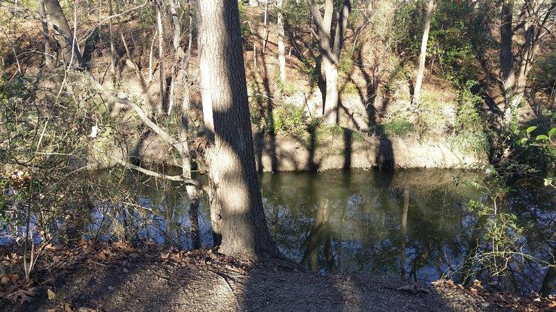 Prairie Creek meanders peacefully alongside the trail.