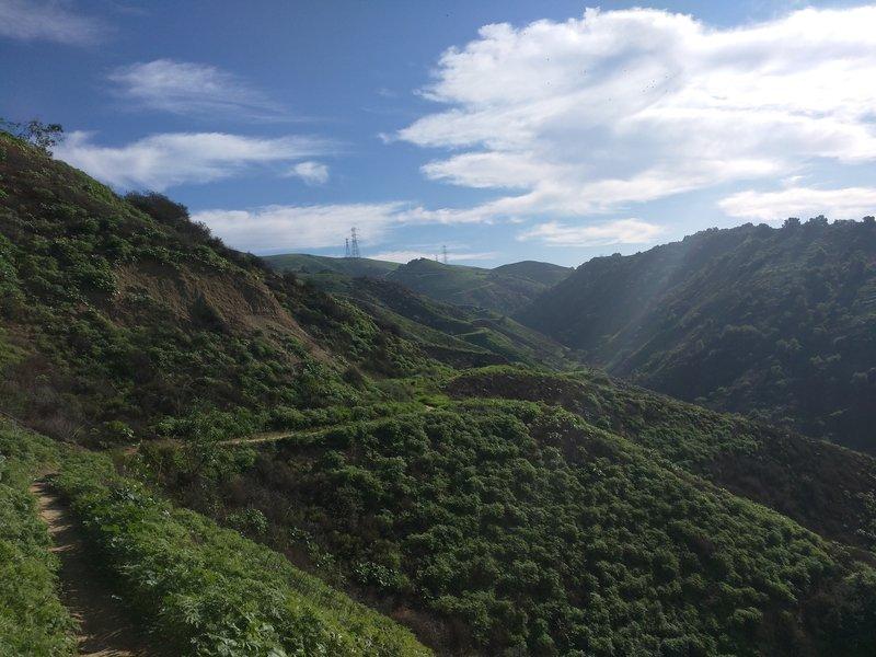 The view along Worsham Canyon.