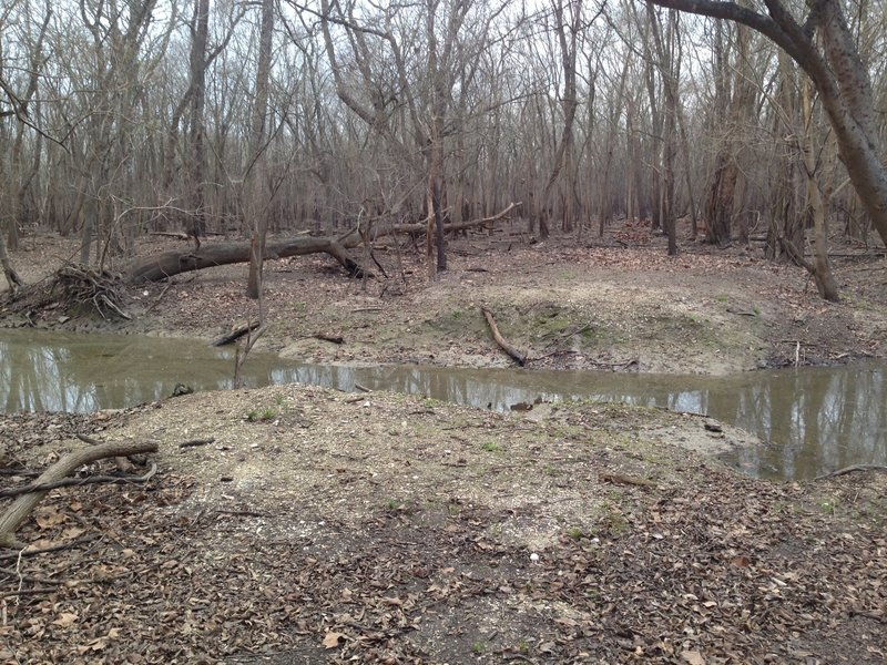 Turkey Creek is located about 200 feet east of the Bauer and Miles Trails.