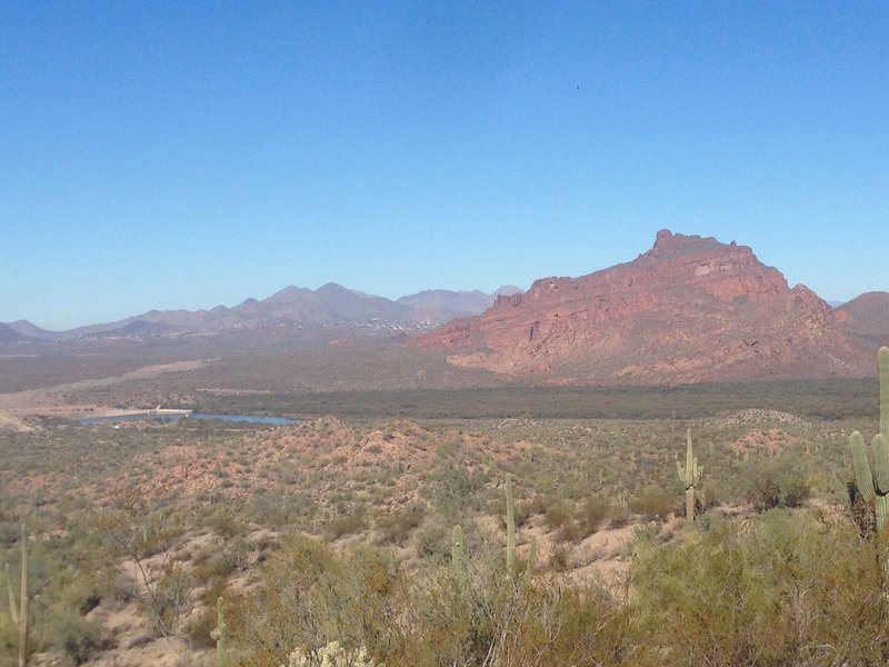 Enjoy great views of Red Mountain along the Saguaro Trail.