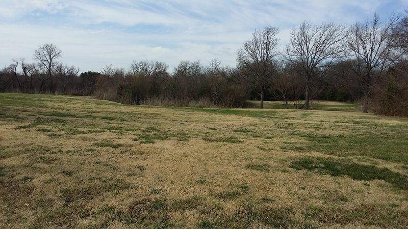 Open fields provide lots of space to enjoy with tons of wildflowers in the spring.