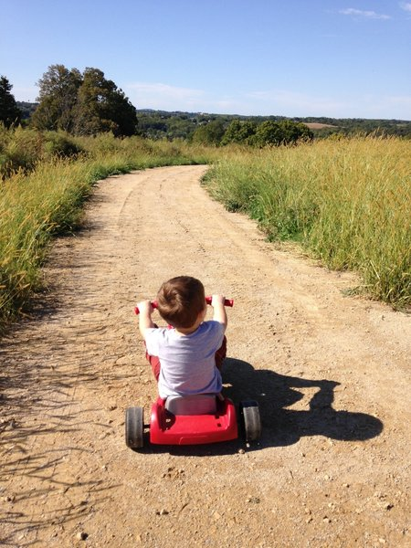 This little guy enjoys an afternoon ride as his family hikes along the Galena View Trail.