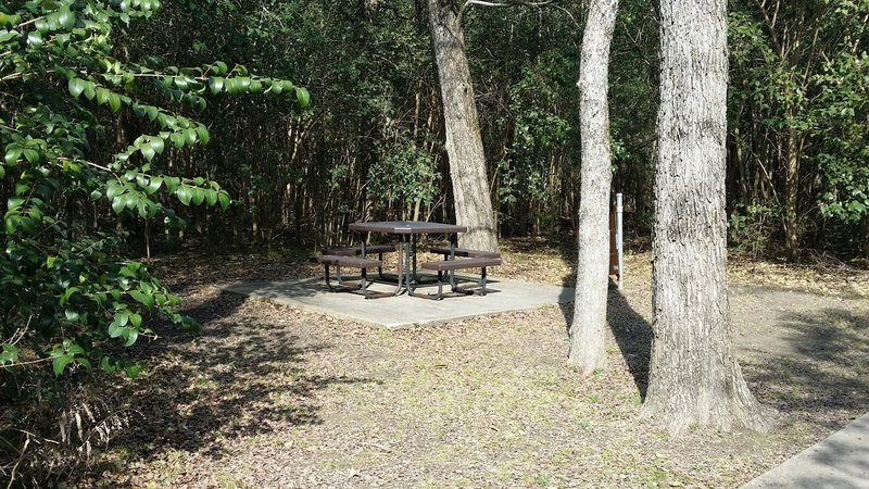Enjoy many picnic tables placed throughout the preserve.