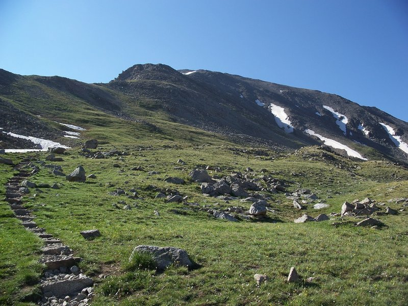 The objective is in sight! La Plata Peak Trail passes through some beautiful alpine meadows that are packed with flowers in the summer.