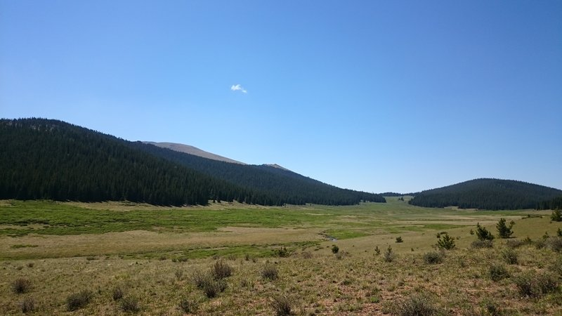 Enjoy this pleasant view when looking south across the Rough and Tumbling Creek meadows.