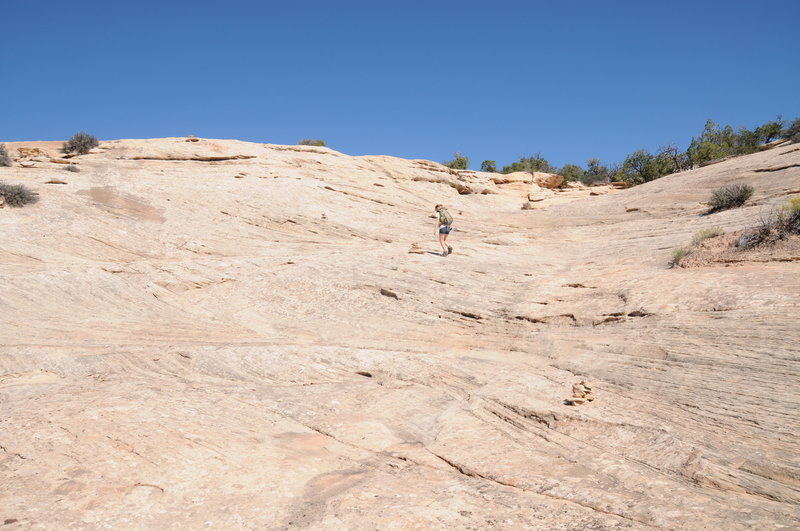 There are some large rock sections on the north end of the trail that make it a little more interesting.