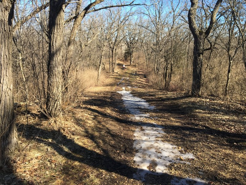 An unusually warm day in mid-February brings sun and smiles to the trail. As you can see, some of the ice from a previous storm is still melting.