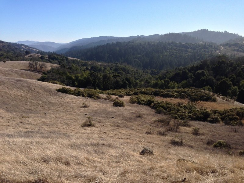 Enjoy a great view down the Stevens Creek Watershed from the Stevens Creek Nature Trail.