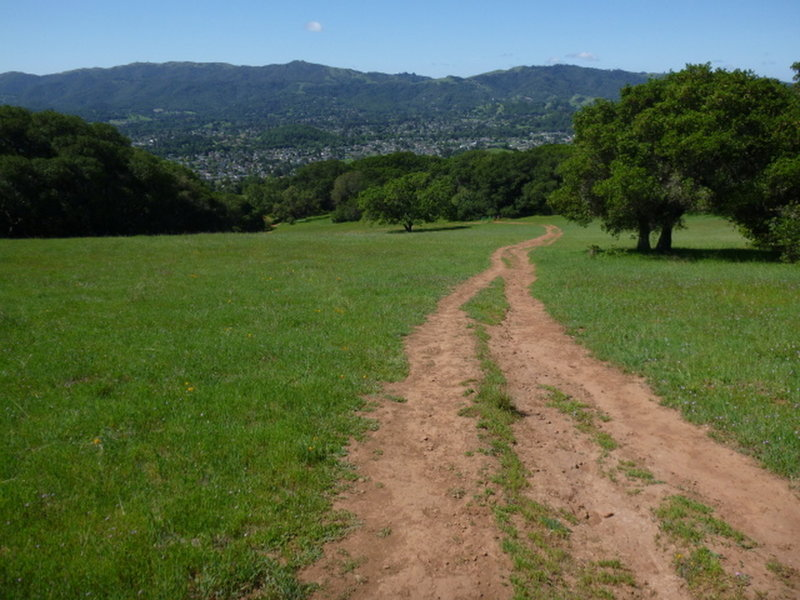 This is a typical Mt. Burdell trail in typical condition. Some fire roads are better than others, but the views of the Novato are worth it.