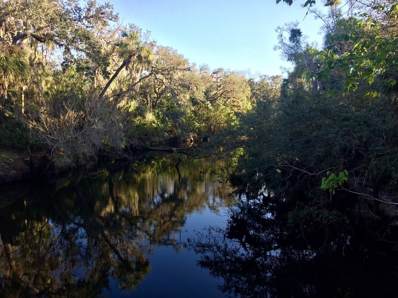 Enjoy a pleasant view of the tannin-rich water from the overlook on the Boardwalk Nature Trail.