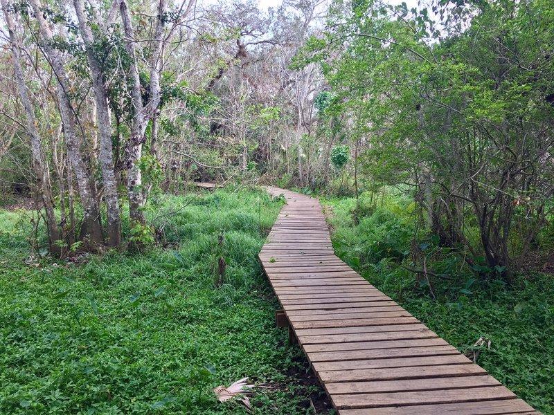 Enjoy this bridge near the end of the Flood Plain Trail.