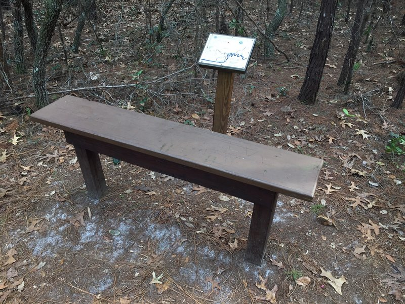 Take a seat and enjoy your surroundings from this bench about halfway down the Turkey Oak Trail.