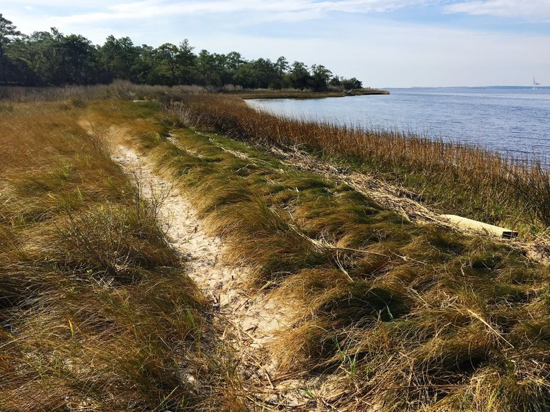 The trail along the Cape Fear River offers gorgeous views of the water and dunes.