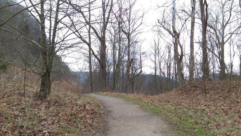 The Wilderness Road Trail is smooth and scenic through this section.