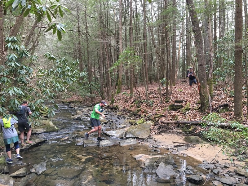 The Lick Creek Trail is home to many creek crossings.