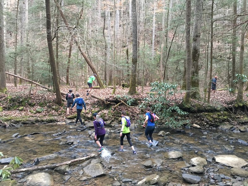 You're in for many creek crossings on the Lick Creek Trail.