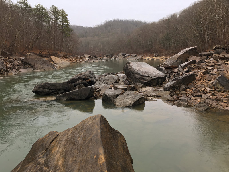 The South Fork of the Cumberland River meanders peacefully alongside the trail.