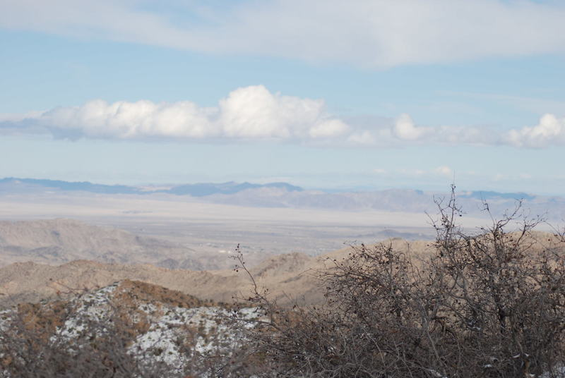 Looking toward the east, it's desert as expected.