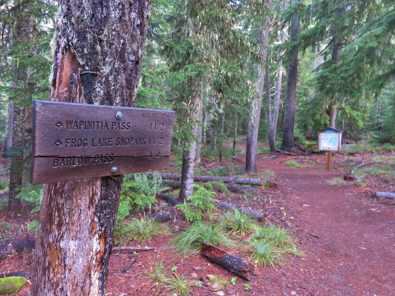 The PCT section between the lower (shown) and upper Twin Lakes Trail junctions, as well as the Twin Lakes Trail north of upper Twin Lakes, is in wilderness. Photo by Yunkette.