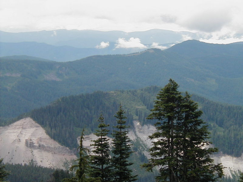 The first viewpoint on Yokum Ridge Trail is about a mile in along a short spur trail to your right just before the large switchback showcases the Sandy River Canyon. Photo by Jerry Adams.
