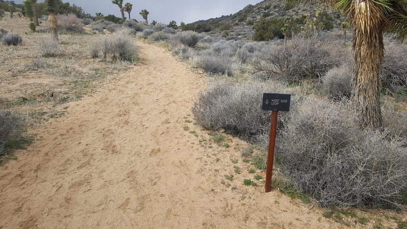 The trails in Black Rock Canyon are all well marked with signs like these.