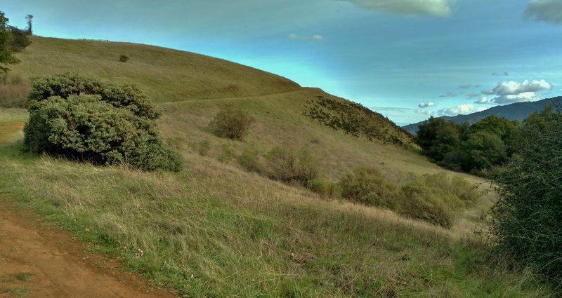 Approaching the summit of Bald Mountain, enjoy rolling hills blanketed in grassy meadows.