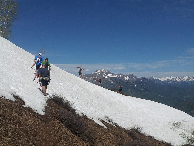 This is the high point of the course before it drops down to Windy Pass in about 1/2 mile. Mt. Timpanogos stands prominently in the background.