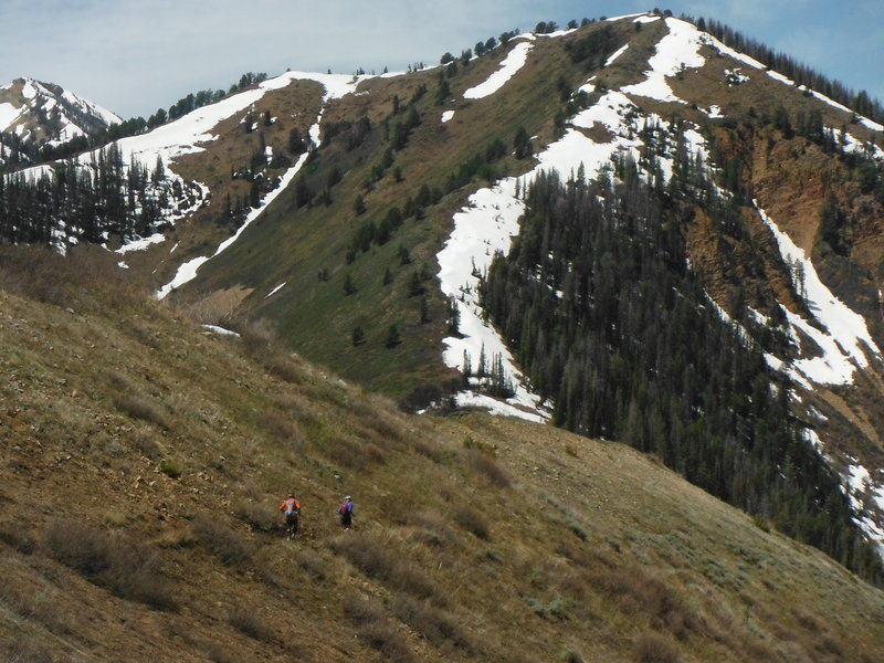 Racers drop down into Windy Pass just ahead!
