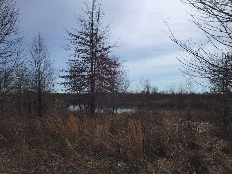 Stonehenge Lake sits alongside the Two Lakes Trail.