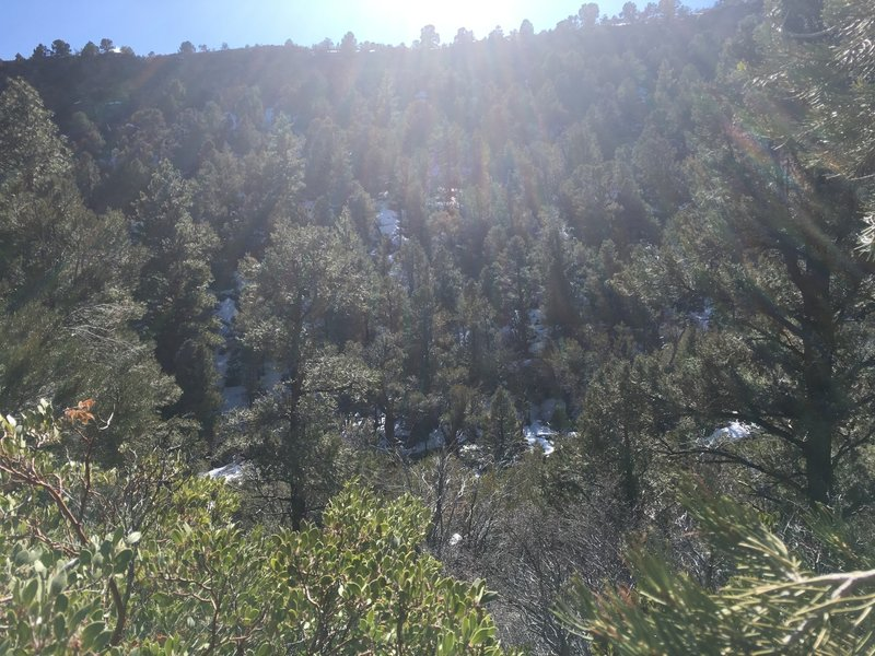An east-west mountain ridge separates the Fletcher Canyon Trail from Hwy 157.