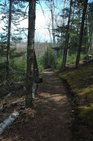 Brule - St. Croix Portage on the North Country Trail offers beautiful views of the surrounding area.