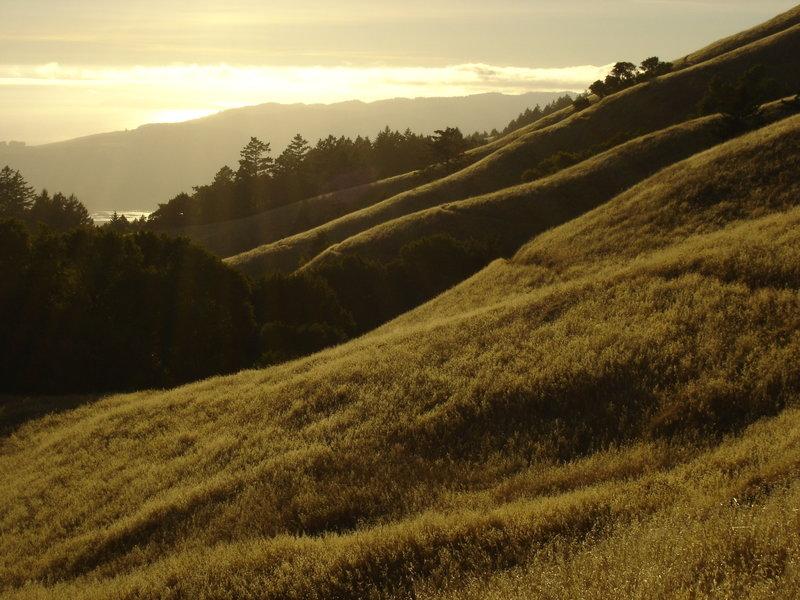 The sun sets over the Pacific Ocean on the Matt Davis Trail.