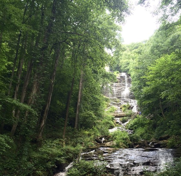 Enjoy phenomenal views of Amicalola Falls from the East Ridge Trail.