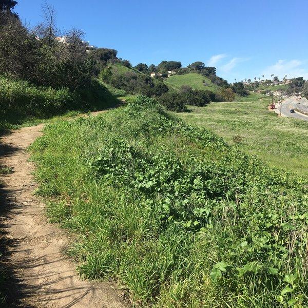Enjoy a smooth tread along the Stocker Corridor Trail.